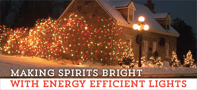 Deck the halls with energy efficient holiday lights.